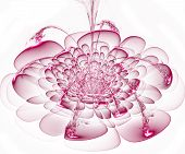 Beautiful Pink Flower On White Background. Computer Generated Graphics.