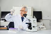 stock photo of microscope slide  - Senior male scientist examining microscope slide in medical lab - JPG