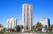 View Of Residential Buildings On Beachfront In Durban