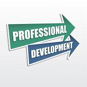 Professional Development In Arrows, Flat Design