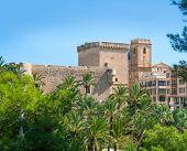 Elche Elx Alicante el Palmeral Palm trees park and Altamira Palace