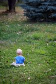Baby Boy Alone On Grass