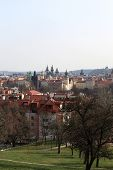 St. Vitus Cathedral Skyline