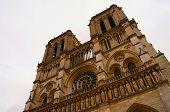 Rosette Notre Dame de Paris