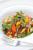 spelt salad, insalata di farro, italian cuisine, close up
