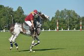 TSELEEVO, MOSCOW REGION, RUSSIA - JULY 26, 2014: Boris Osoyev of Tseleevo Polo club warms up before