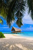 picture of beach hut  - Diving club on a tropical island  - JPG