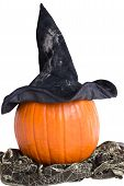 Pumpkin With Witch Hat And Scarf