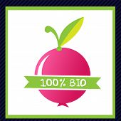 Icon and elements for organic bio food
