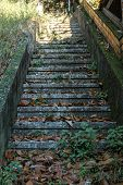 foto of staircases  - Detail of old concrete staircase with leaf litter - JPG