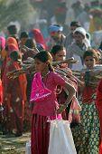 Indian Girls Walking At Pushkar Camel