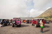 Tourists  cars