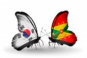 Two Butterflies With Flags On Wings As Symbol Of Relations South Korea And Grenada