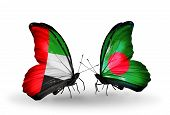 Two Butterflies With Flags On Wings As Symbol Of Relations Uae And Bangladesh