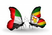 Two Butterflies With Flags On Wings As Symbol Of Relations Uae And Zimbabwe