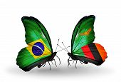 Two Butterflies With Flags On Wings As Symbol Of Relations Brazil And Zambia