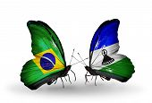 Two butterflies with flags on wings as symbol of relations Brazil and Lesotho