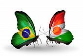 Two Butterflies With Flags On Wings As Symbol Of Relations Brazil And Niger