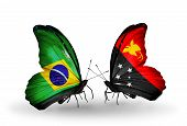 stock photo of papua new guinea  - Two butterflies with flags on wings as symbol of relations Brazil and Papua New Guinea - JPG
