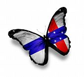 Netherlands Antilles Flag Butterfly, Isolated On White