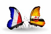 Two Butterflies With Flags On Wings As Symbol Of Relations France And Brunei