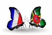 Two Butterflies With Flags On Wings As Symbol Of Relations France And Dominica