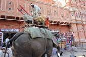 Traditional Indian Painted Elephant In The Street Of Jaipur