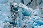 Horse Head Ice