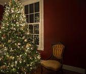 Christmas tree by window