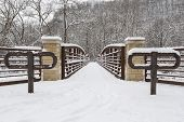 Footbridge In Winter