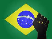 Brazilian Flag With Protest Sign