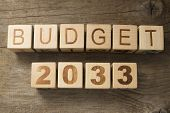 pic of reveillon  - Budget for 2033 wooden - JPG