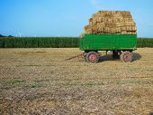 foto of hayride  - Hay bales stacked on a green trailer in a farmer - JPG