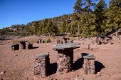 picture of canary  - Picnic Recreational Area in Gran Canaria Canary Islands - JPG