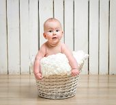 stock photo of 5s  - Adorable five month baby girl in wicker basket - JPG
