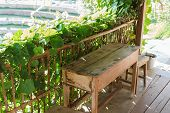 image of lawn chair  - wooden table and chair on the terrace with the garden view - JPG