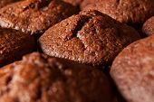 stock photo of chocolate muffin  - Close up of fresh appetising chocolate muffins - JPG