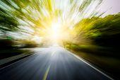 image of tree lined street  - Road in motion blur - JPG