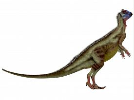 stock photo of omnivore  - Hypsilophodon was an omnivorous dinosaur that lived in the Cretaceous Period of England - JPG
