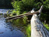 image of mckenzie  - log on the mckenzie river near springfield oregon - JPG