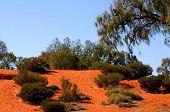 Australia Outback 52