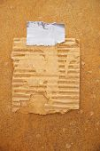 image of tear ducts  - piece of old cardboard taped to a grunge wall - JPG