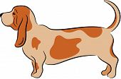 foto of bloodhound  - Vector Illustration of a funny dog - JPG