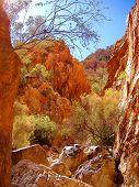 Australia Outback 126