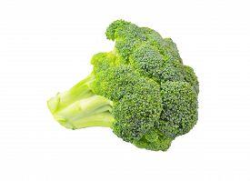stock photo of cruciferous  - Whole broccoli vegetable isolated on white background - JPG