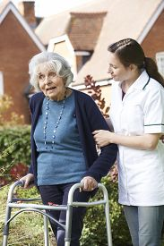 pic of zimmer frame  - Carer Helping Senior Woman To Walk In Garden Using Walking Frame - JPG
