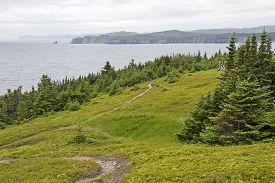 image of trinity  - Fox Island Nature Trail in Trinity Bay Newfoundland Canada - JPG
