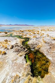 pic of algae  - Colorful hot spring with deposits of minerals and algae on the Andean Highlands Bolivia - JPG