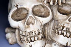 stock photo of eye-sockets  - Old weathered human skull  - JPG