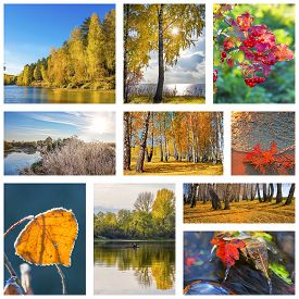 pic of siberia  - Collage of nature photos of Siberia in Russia in the autumn - JPG